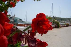 Lefkada villa holiday vacation